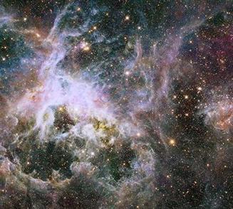 Tarantual nebula