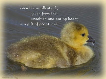 a-gift-of-great-love-quotes
