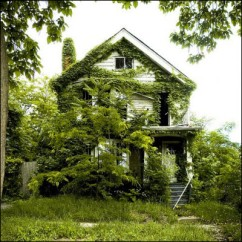detroit-abandoned-houses-2