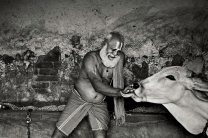 INDIA-10941NF_b