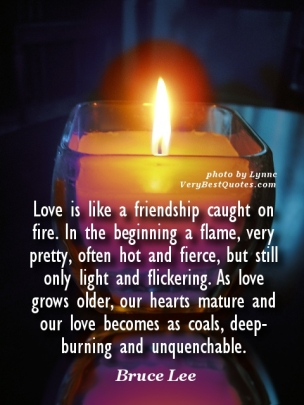 Love-quotes-Love-is-like-a-friendship-caught-on-fire.-In-the-beginning-a-flame-very-pretty-