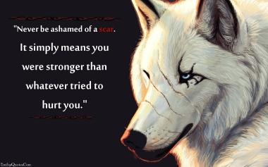 Never be ashamed of a scar
