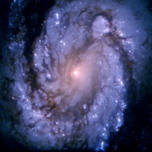 spiral-galaxy-m100-hst-25th-anniversary